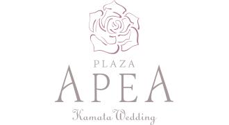 apea_logo