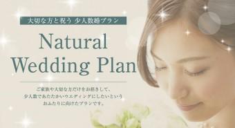 bridal_plan_